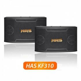 Loa HAS KF310