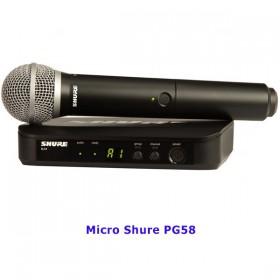 Micro Shure PG58