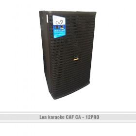 Loa karaoke CAF CA – 12Pro
