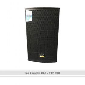 Loa karaoke CAF – T12 Pro