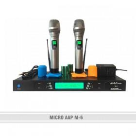 Micro AAP M-6