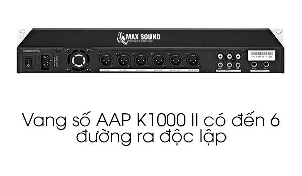 Vang số Vang số AAP K1000 II có đến 6 đường ra độc lập