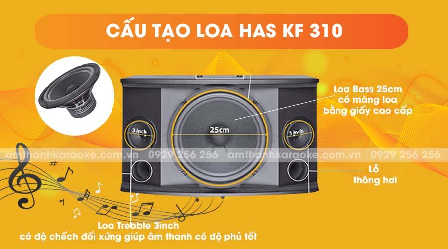Cấu tạo loa HAS KF-310