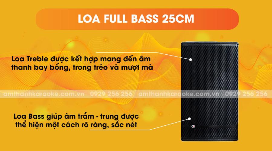 Loa Louis Martin Kone 10 full bass 25cm